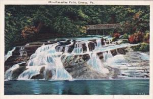 Pennsylvania Cresco Paradise Falls