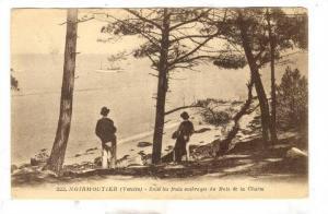 Sous Les Frais Ombrages Du Bois De La Chaize, Noirmoutier (Vendee), France, 1...