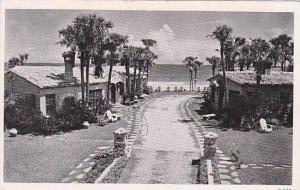 Florida Daytona Beach The Palm Circle Villas Inc