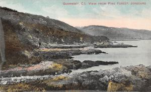 C.I. Guernsey, Jerbourg, View from Pine Forest