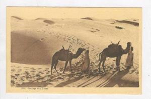 Passage Des Dunes, Two People Walking With The Camels, Africa, 1900-1910s