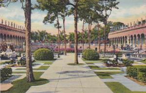 Florida Sarasota Looking West In Ringling Art Museum Curteich