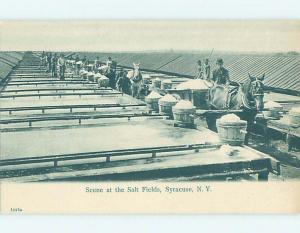 Pre-1907 POSTCARD SCENE Syracuse New York NY hp9351