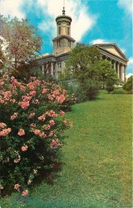 Nashville Tennessee~State Capitol~Pink Flower Blooms Downhill~1950s