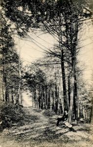 CT - New Haven - East Rock Park, The Sachem Trail