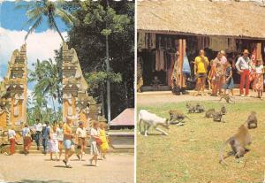 BR28201 Sangeh Hutan kera Bali indonesia