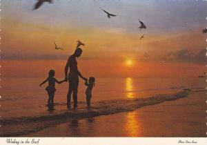 Wading in the Surf, Sunset Along Beach, South Carolina, 50-70´s