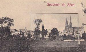 Souvenir de Sees, Orne department (Normandy region), France, 00-10s; Pop-outview