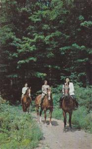 Horse Riding on Interesting Trails