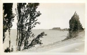 Isleton California~Sacramento River Scenic View~Paved Road~1930s Real Photo~RPPC