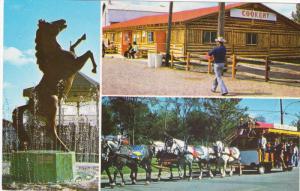Annual Western Festival, LAVIOLETTE, Quebec, Canada, 40-60´s