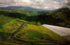 Hawaii Kauai Hanalei Valley