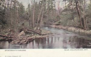 Scenic view, Sportsman's Paradise, near Collingwood,Ontario,Canada,00-10s