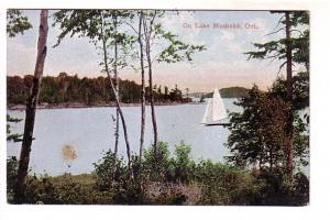 On Lake Muskoka, Sailboat, Ontario,