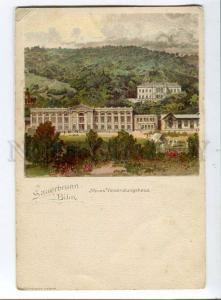 258077 GERMANY SAUERNBRUNN BILIN Vintage litho postcard