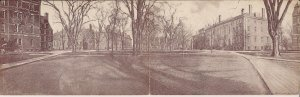 Harvard Yard, University, Cambridge MA 1906, Bi-Fold Postcard, College Campus