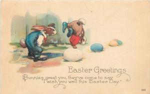 Fantasy Easter~Dressed Rabbits~Blue Jeans~Cap~One On Front Paws~Shows Off~#903