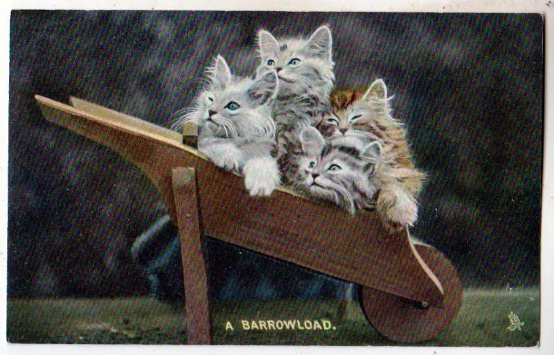 Kittens - A Barrowload / Tuck's 4410