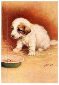 Dog , Pyrenean Mountain Dog     artist signed