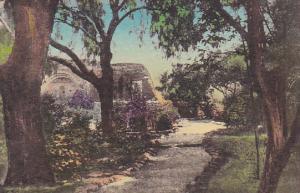 Old Stone Church In Background Old Mission San Juan Capistrano California Han...