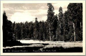 1940s SEQUOIA NATIONAL PARK California RPPC Photo Postcard Crescent Meadows