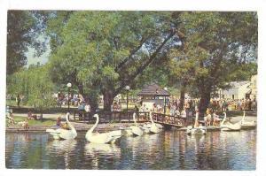 Swan Boat Ride, Toronto, Onatrio, Canada, 40-60s