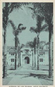 TIJUANA HOT SPRINGS , Mexico , 1920s; Avenida De Las Palmas, Agua Caliente