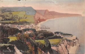 SIDMOUTH DEVON UK~KILLERTON HOUSE~FRITH'S  SERIES PHOTO POSTCARD 1909