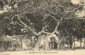 CPA Vietnam Indochine ANNAM Sam-Son - Pagode des phonolithes (61565)