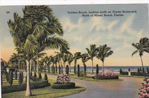 Florida Miami Beach Golden Beach Looking North On Ocean Boulevard