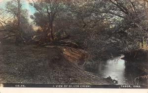 Tabor Iowa~Handcolored RPPC~Along the Banks of the Silver Creek c1910