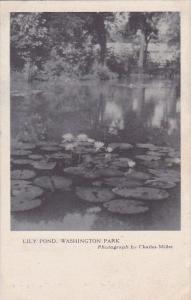 Lily Pond Washington Park Chicago Illinois