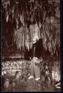 Stalactites,Cave of the Mounds,Blue Mounds,WI