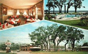 Vintage Postcard Sahara Motel Family Units Live Oaks Pine Gulfport Mississippi
