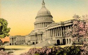 DC - Washington. United States Capitol  (Hand Colored)