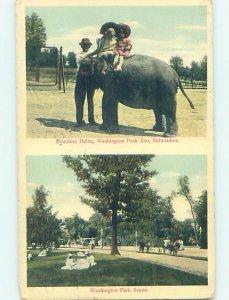 W-Border ZOO SCENE Milwaukee Wisconsin WI AG1958
