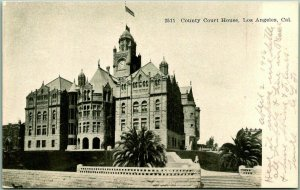 1906 Los Angeles, California Postcard L.A. COUNTY COURT HOUSE Street View