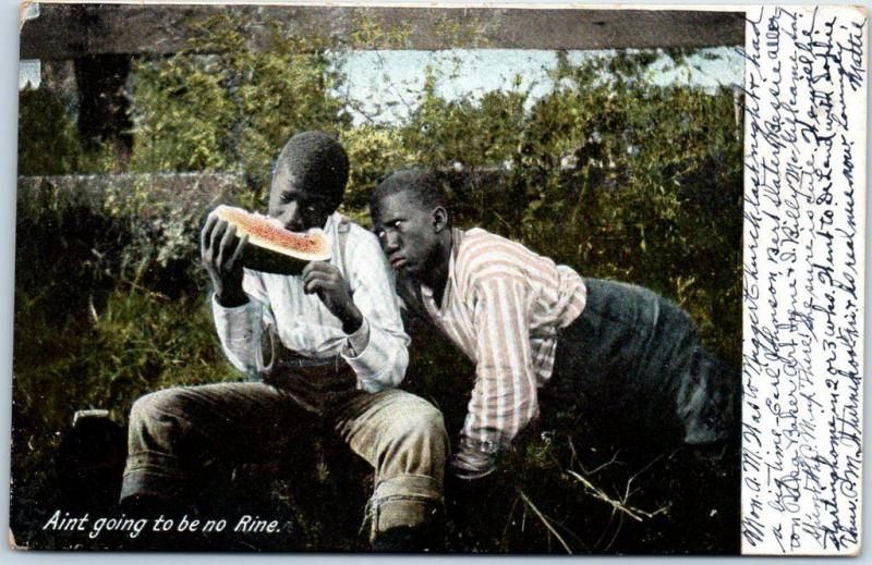 1900s Black Americana Postcard Black Boys Watermelon Ain't Going to Be No Rine
