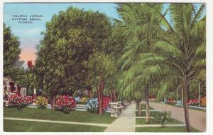 P335 JLs 1930-45 postcard halifax ave daytona beach fl gardens