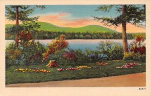 US River, Landscape, Paysage, Colourpicture 42471