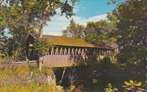 Bloods Brook Covered Bridge Meriden New Hampshire