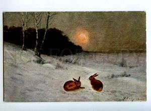 224192 RUSSIA NAYDEN HUNTING orphaned rabbits SFM #31 postcard