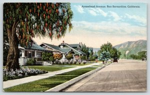 San Bernardino California~Arrowhead Avenue~Residential Area~Car on Road~c1910