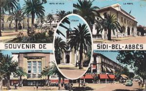 RP: Sidi-bel-Abbes , Algeria , 30-40s