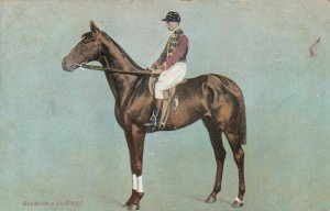 Race Horse DIAMOND JUBILEE , UK , 1905