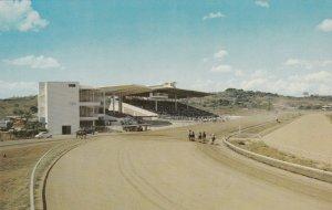 Panama President Ramon Racetrack Horse Racong sk4080