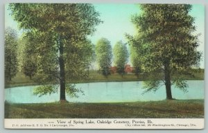 Proviso-La Grange-Chicago IL~Trees Planted by Oakridge Cemetery Spring Lake~1910