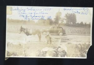 REAL PHOTO PHOTOGRAPH TAYLORVILLE ILLINOIS TOBACCO FARMING OLD CAR MULE ILL.