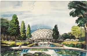 The CLIMATRON, at Missouri Botanical Garden, St. Louis, unused Postcard