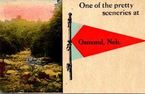 Nebraska Osmond One Of The Pretty Sceneries 1915 Pennant Series